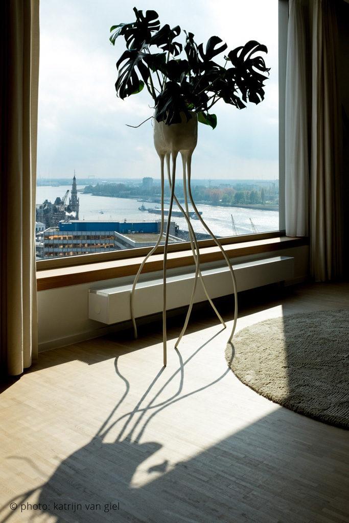 monstera magnifica design planter interior