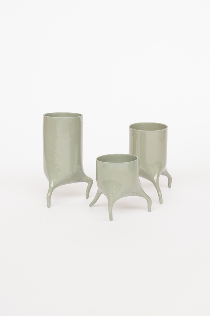 carnivora set laurelgreen design planter