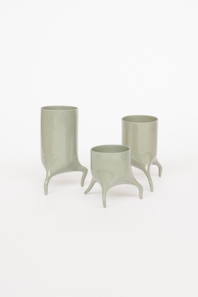 carnivora set laurelgreen design planter