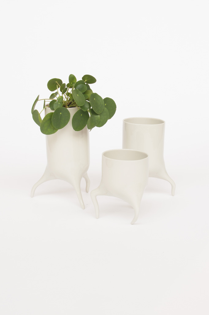 carnivora set peble design planter